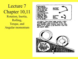 Lecture 7 Chapter 10,11 Rotation, Inertia, Rolling,  Torque, and  Angular momentum