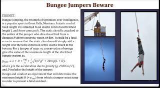 Bungee Jumpers Beware