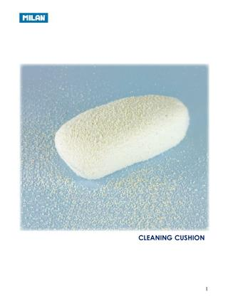 CLEANING CUSHION