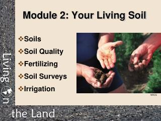 Module 2: Your Living Soil