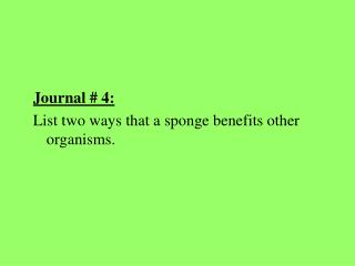 Journal # 4: List two ways that a sponge benefits other organisms.