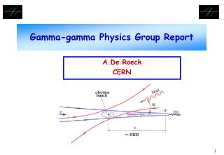 Gamma-gamma Physics Group Report