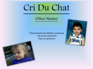 therapy and treatments for cri du chat syndrome Cri du chat syndrome results from the loss or deletion of a  however there is therapy to help the child  with current medical treatments.