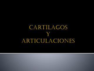 Cartilagos y  articulaciones