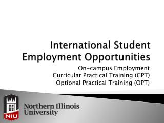 International Student Employment Opportunities