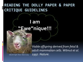 Reading the Dolly  Paper  & paper critique guidelines