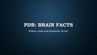 PDR: Brain facts