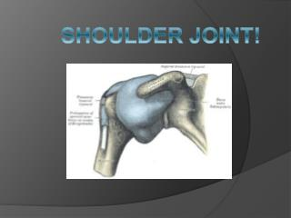 SHOULDER JOINT!