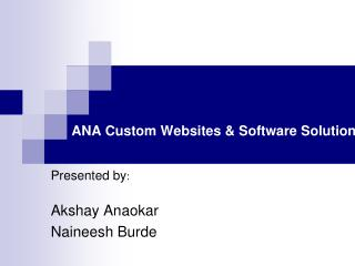 ANA Custom Websites & Software Solutions