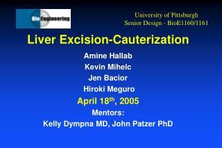 Liver Excision-Cauterization