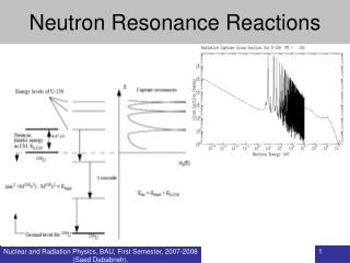 Neutron Resonance Reactions