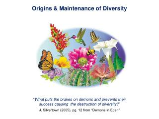 Origins & Maintenance of Diversity