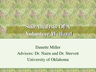 Soil Analysis Of A Volunteer Wetland