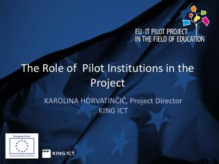 The Role of  Pilot Institutions in the Project