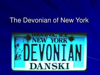 The Devonian of New York