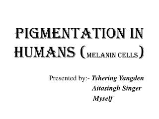 Pigmentation in humans ( melanin cells )