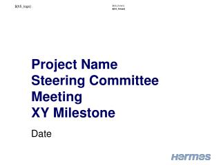 Project Name Steering Committee M eeting XY Milestone