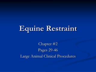 Equine Restraint