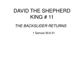 DAVID THE SHEPHERD KING # 11