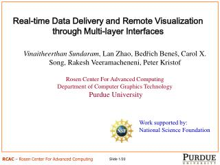 Real-time Data Delivery and Remote Visualization through Multi-layer Interfaces