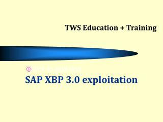 SAP XBP 3.0 exploitation