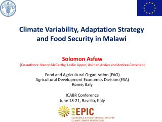 Climate Variability, Adaptation Strategy and Food Security in Malawi