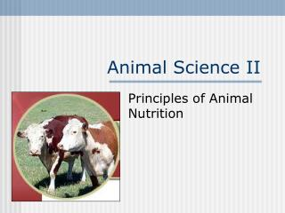 Animal Science II