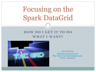 Focusing on the Spark DataGrid