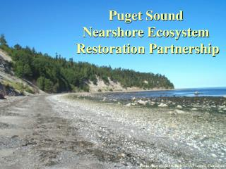 Puget Sound Nearshore Ecosystem Restoration Project