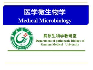 病原生物学教研室 Department of pathogenic Biology of Gannan Medical   University