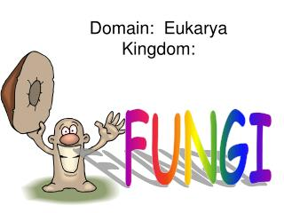 Domain:  Eukarya Kingdom: