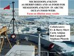 MICROZOOPLANKTON  AS HERBIVORES AND AS FOOD FOR MESOZOOPLANKTON  IN ARCTIC OCEAN FOOD WEBS Focus on dilution assay resul