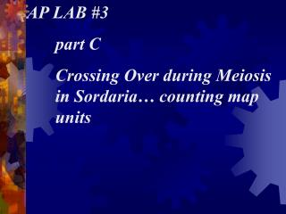 AP LAB #3 	part C 	Crossing Over during Meiosis 	in Sordaria… counting map 	units