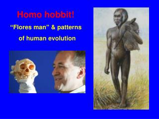 "Homo hobbit! "" Flores man ""  & patterns       of human evolution"