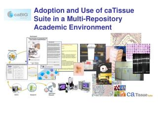 Adoption and Use of caTissue Suite in a Multi-Repository Academic Environment