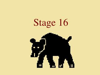 Stage 16