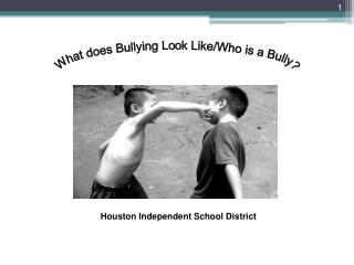 What does Bullying Look Like/Who is a Bully?