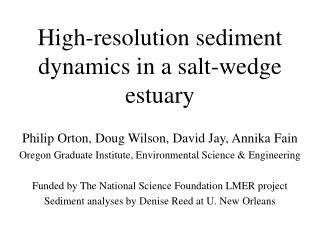 High-resolution sediment dynamics in a salt-wedge estuary