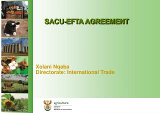SACU-EFTA AGREEMENT