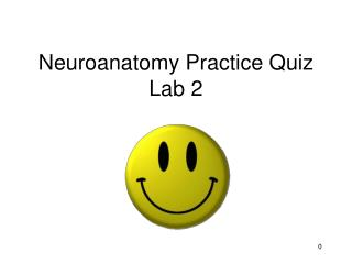 Neuroanatomy Practice Quiz Lab 2