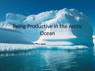 Being Productive in the Arctic Ocean