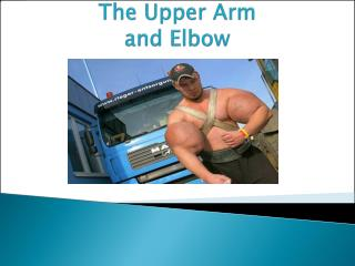 The Upper Arm and Elbow