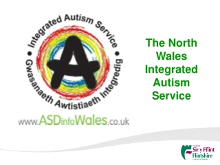 Family Needs for Support Following an Autism Diagnosis