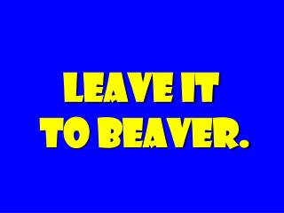 LEAVE IT  TO BEAVER.