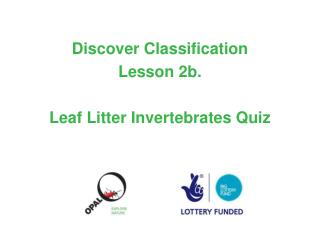 Discover Classification  Lesson 2b.   Leaf Litter Invertebrates Quiz