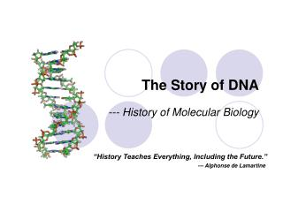 The Story of DNA