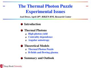 T he Thermal Photon Puzzle Experimental Issues