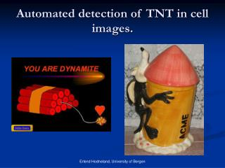 Automated detection of TNT in cell images.