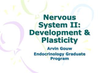 Nervous System II:  Development & Plasticity