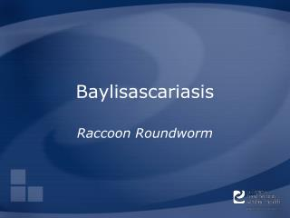 Baylisascariasis